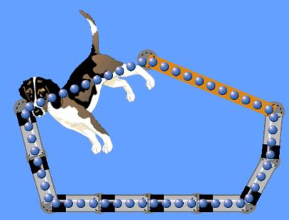 dog circuit