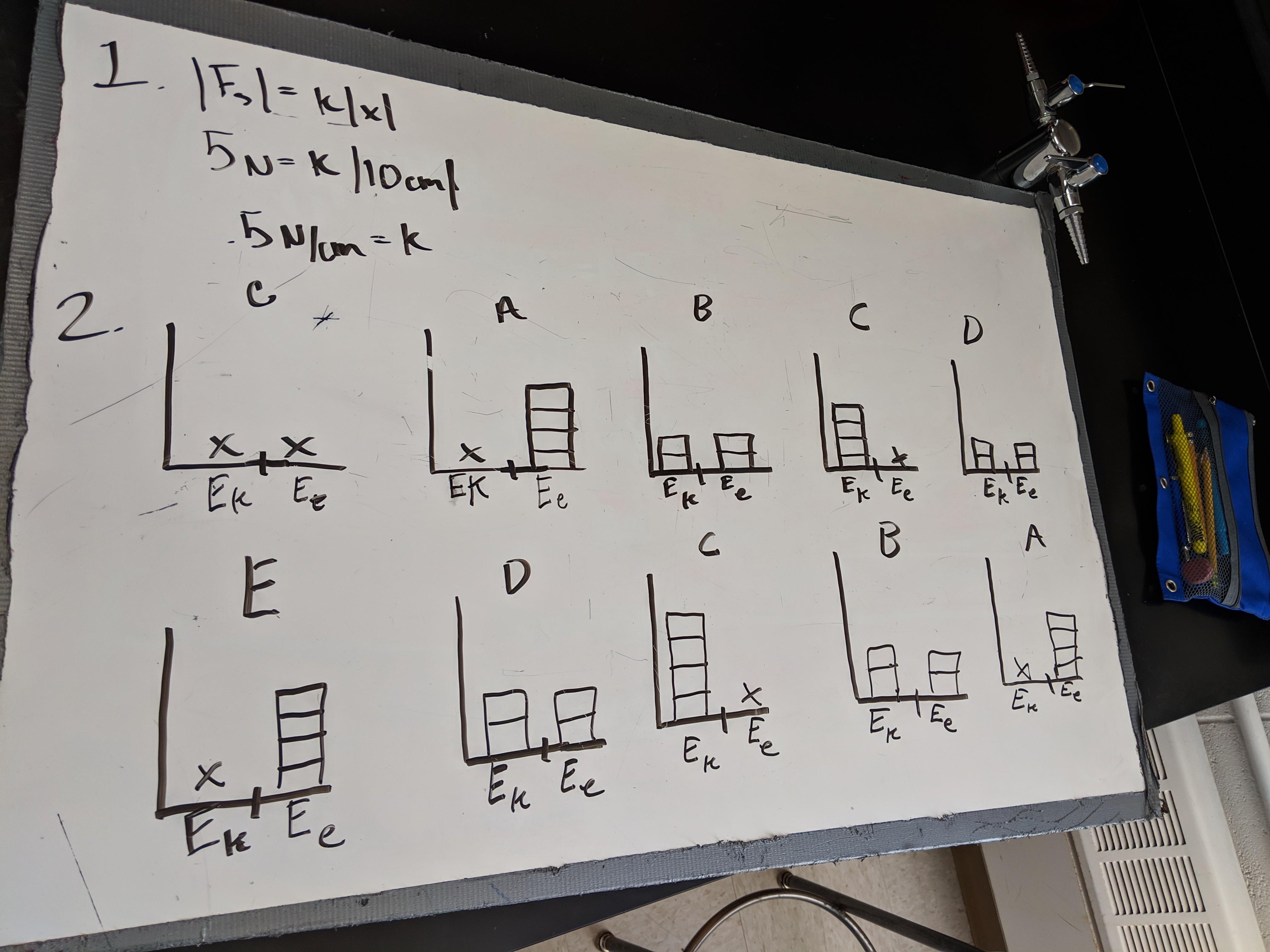 ap bar charts.jpg
