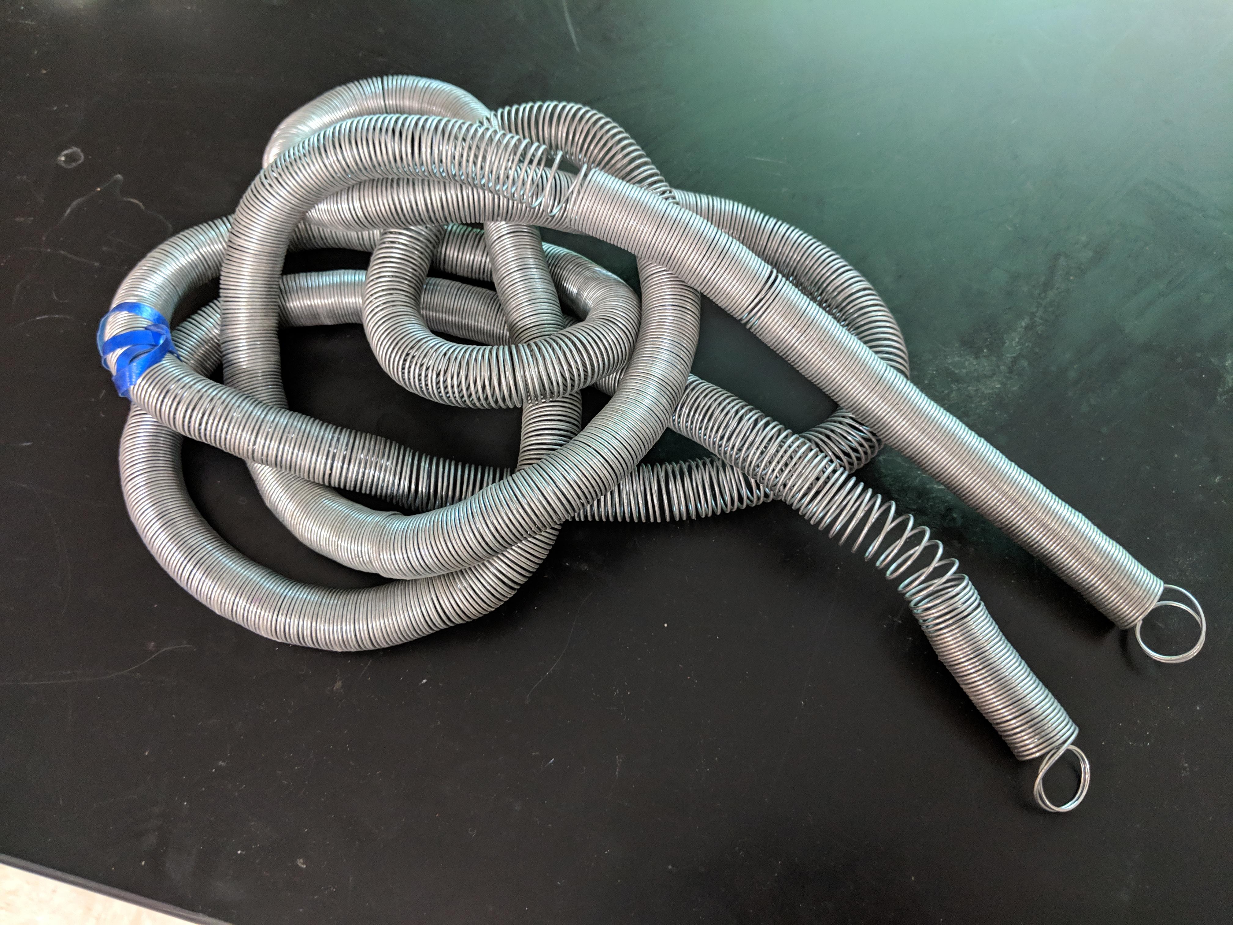 phys snakey.jpg